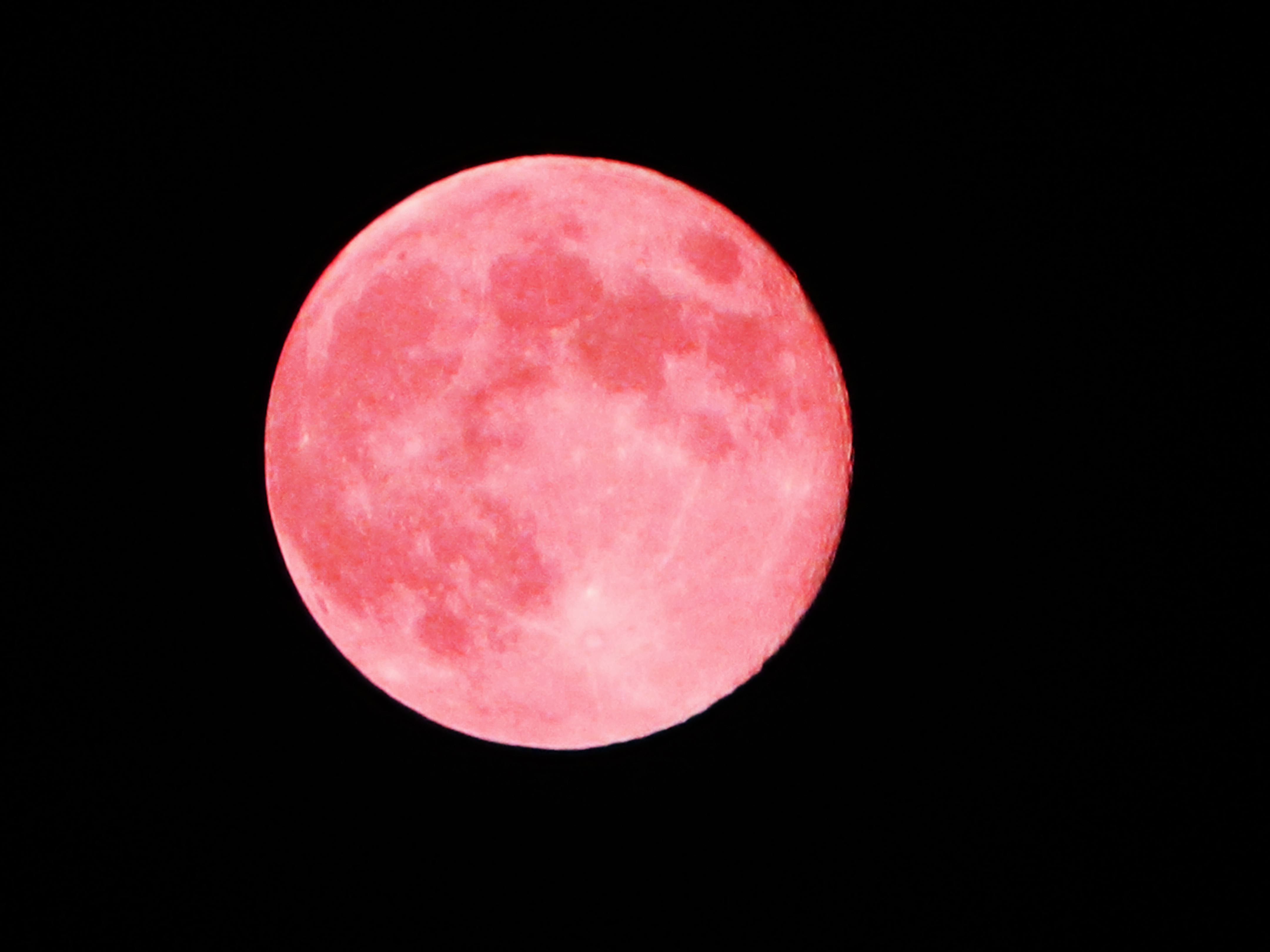 Moon Phase: Full Moon/Pink Moon