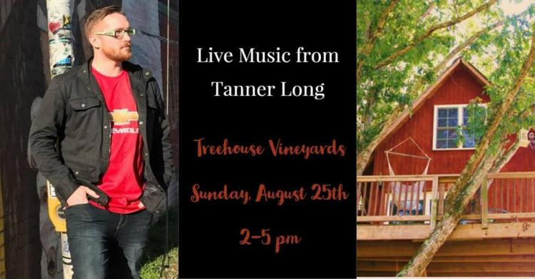Tanner Long plays Sunday Funday series at Treehouse Vineyards