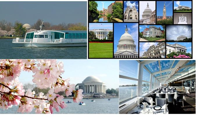 CHERRY BLOSSOM CRUISE - SOLD OUT