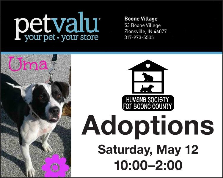 Humane Society for Boone County Adoption Event - Zionsville