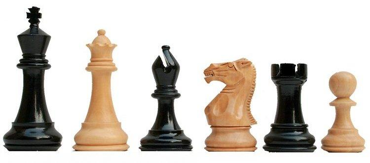 Intergenerational Chess at Zionsville Library