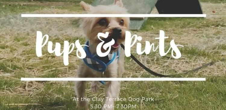 Pups & Pints at Clay Terrace