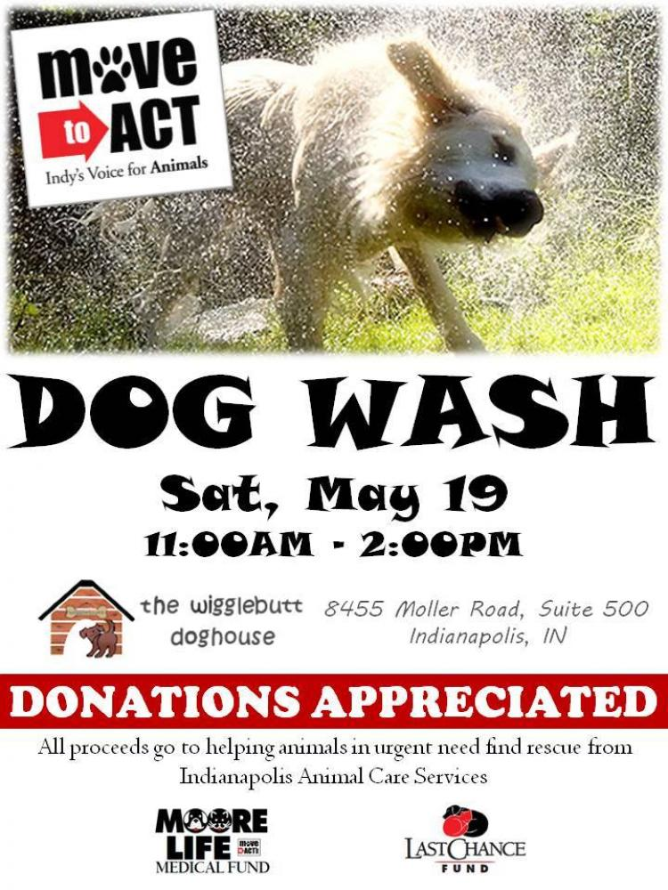 Move to Act Dog Wash benefiting Animals in Urgent Need