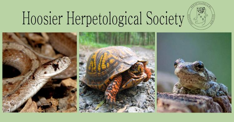 Hoosier Herpetological Society at Holliday Park - Open to Public