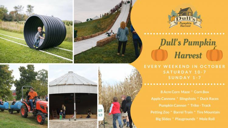 Pumpkin Harvest Weekends at Dull's Tree Farm