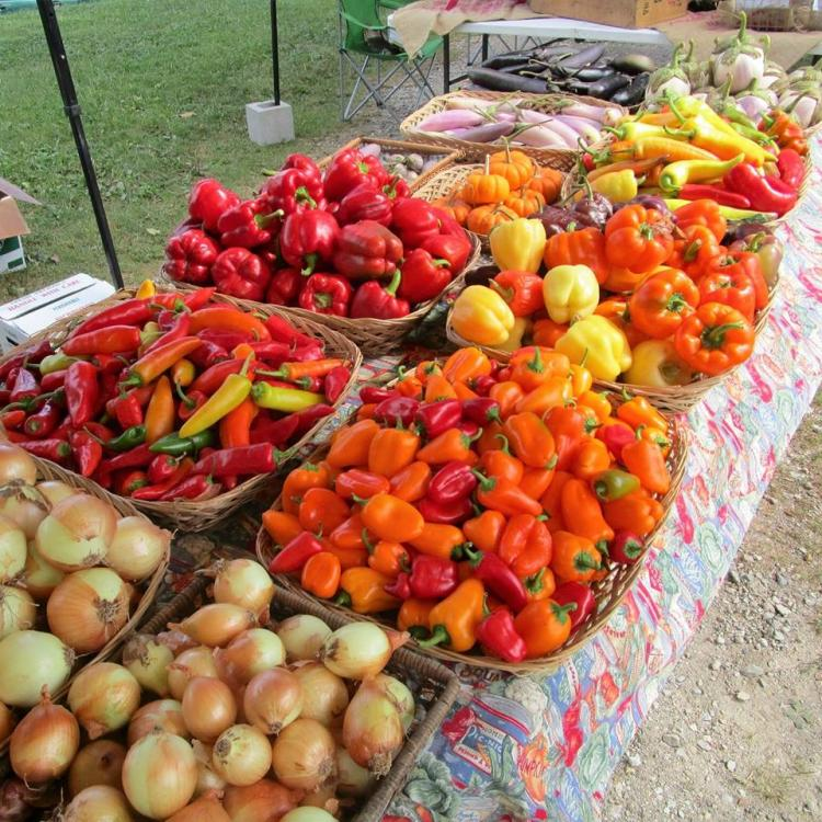 Irvington Farmers Market - COVID 19 Edition