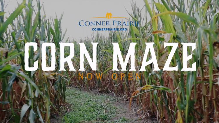 Daytime Corn Maze at Conner Prairie