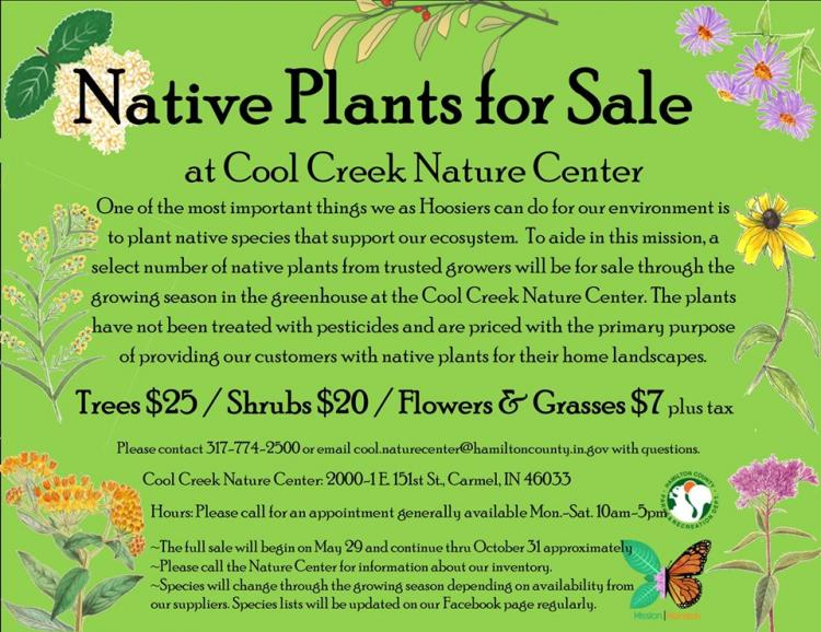 Native Plants for Sale