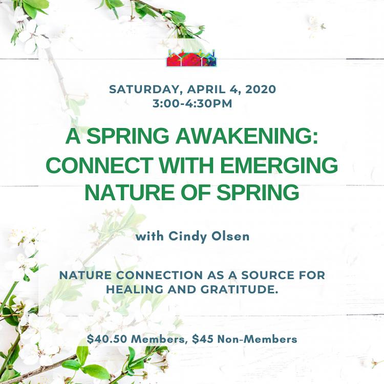 A Spring Awakening: Connect with Emerging Nature of Spring