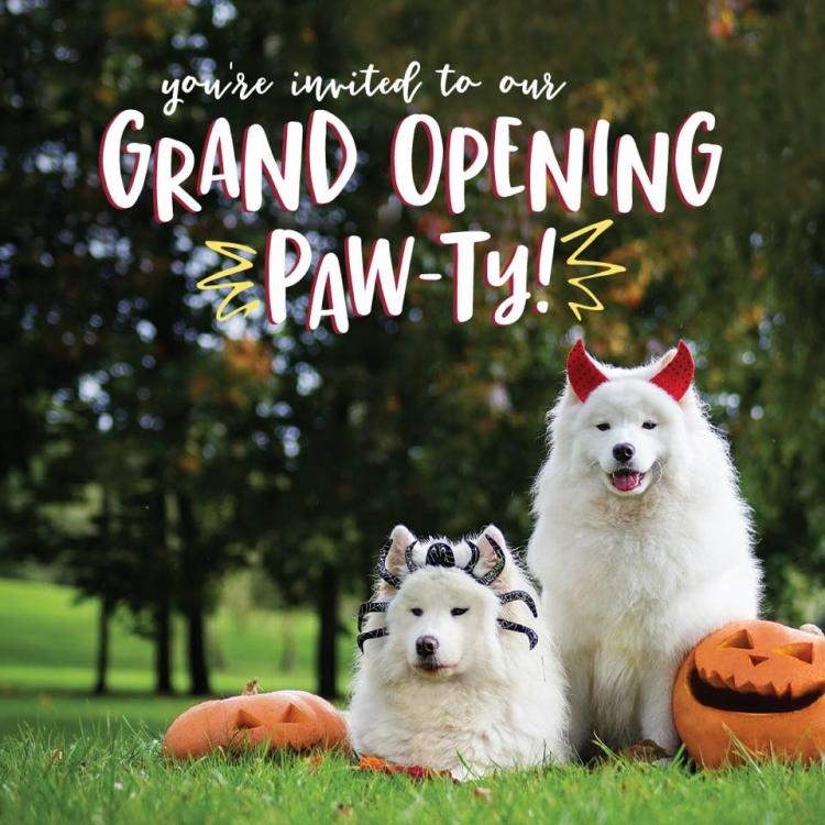 Camp Bow Wow Rowlett's Howl-o-ween Paw-ty Grand Opening! Kids & Family