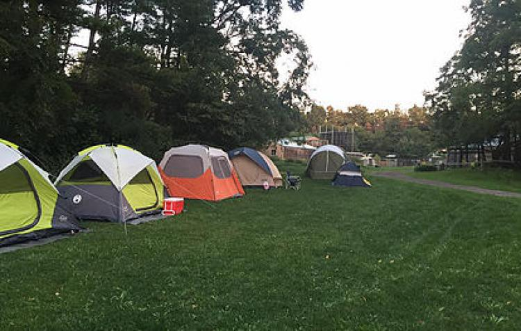 Roar 'n' Snore Family Overnight Camp
