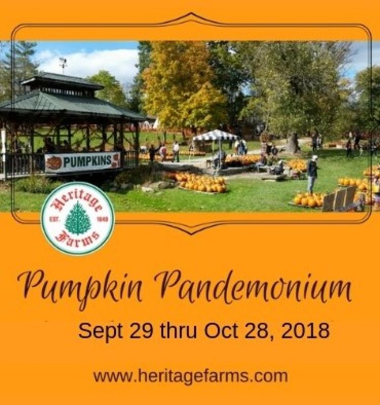 Pumpkin Pandemonium at Heritage Farms Peninsula