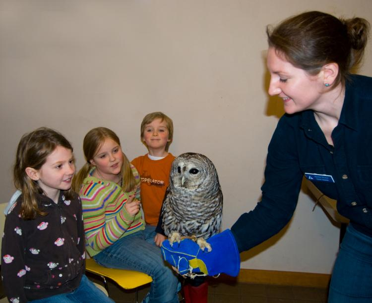 Owl Festival: Up Close and Personal with the Owls of Broadmoor-1 or 3pm show