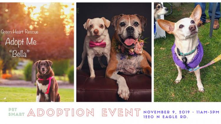 Green Heart Rescue ADOPTION EVENT