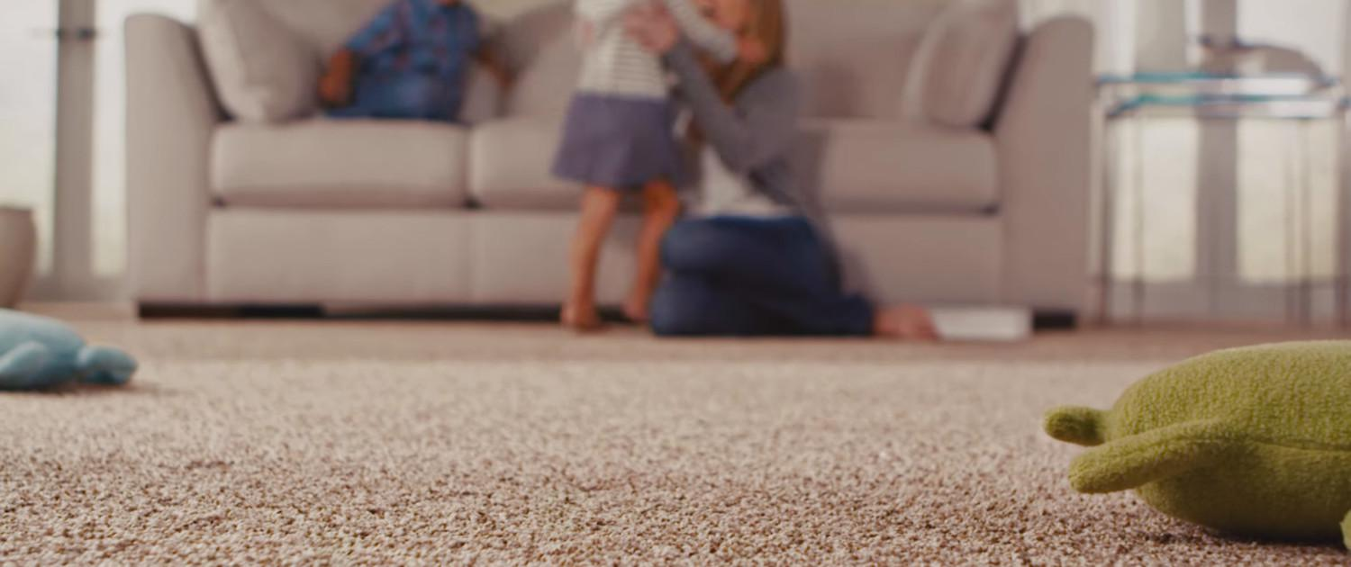 Langenwalter Carpet & Stain Removal