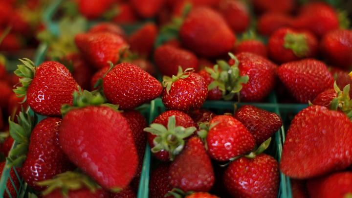 Strawberries on the Square - Rescheduled
