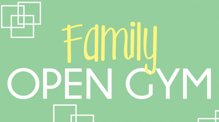 Family Open Gym