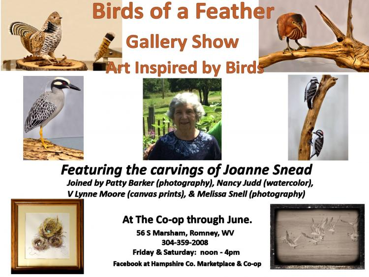 Birds of a Feather Gallery Show