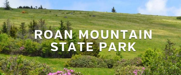 EARTH DAY Volunteer Work Day 2018 - Roan Mountain State Park