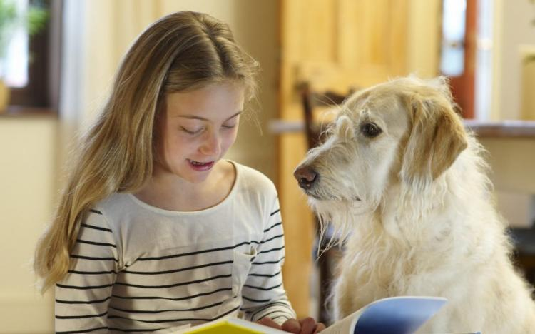 Paws for a Tale (Lake Bluff Public Library)