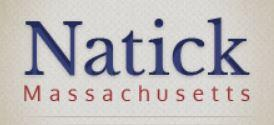 Family Performing Arts Series - Natick Common