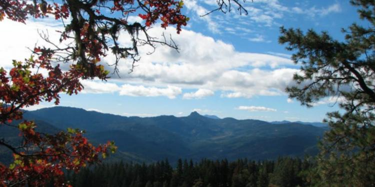Hike & Learn WALK: Fall Birds of Cascade-Siskiyou NM with Shannon Rio
