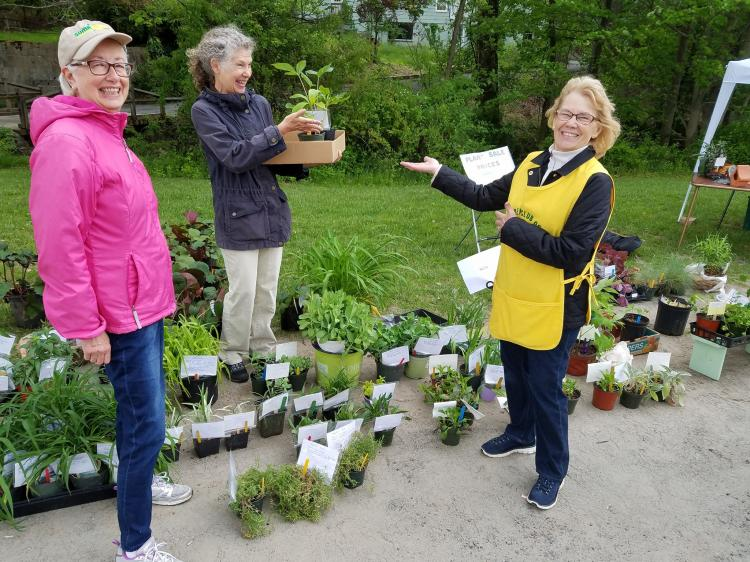 Watchung Garden Club Annual plant sale