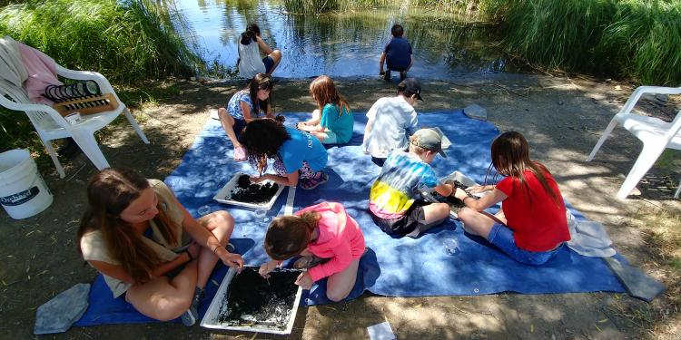 Discover the Wetlands Summer Camps 2019- For children entering 4th-6th grade