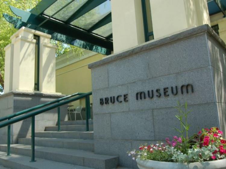 Bruce Museum to host Conservation Conversation: Panel Discussion