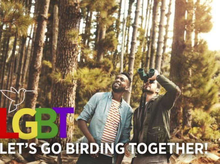 LGBT - Let's Go Birding Together!