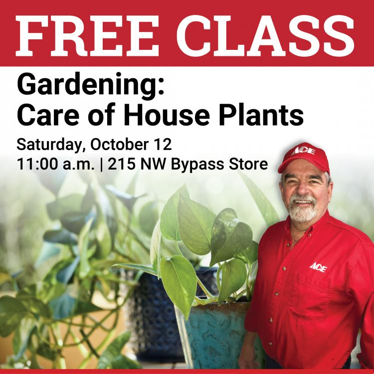 Free Class - Gardening: Care of House Plants