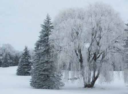 Winter Hazard Awareness Week