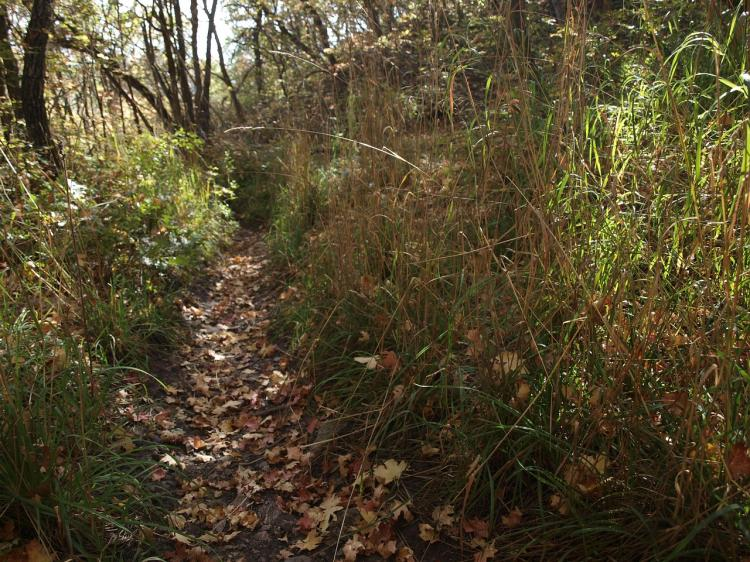 Eastman Nature Center - Hike with a Naturalist