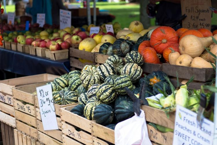 Fall Farmers Markets in the West Metro