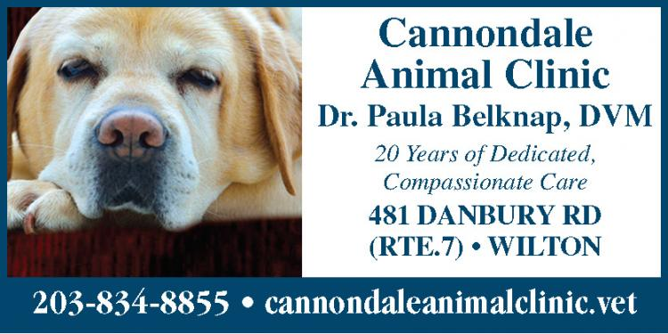 Cannondale Animal Clinic: Open for Business!