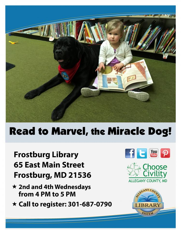Read to Marvel, the Miracle Dog