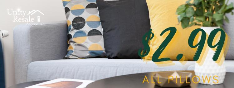 Weekly Sale - All Pillows $2.99!