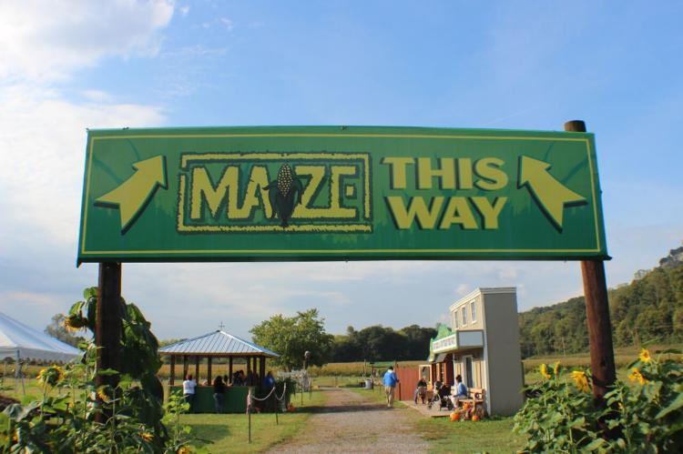 Blowing Springs Farm in Flintstone, GA featuring Rock City's Enchanted MAiZE