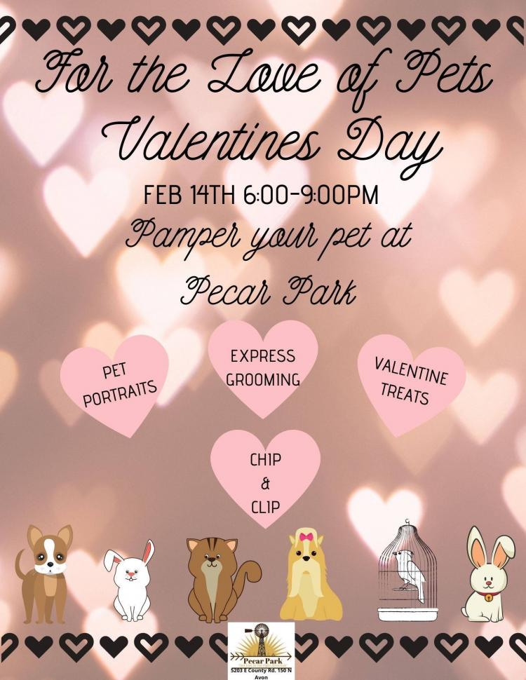 For the Love of Your Pet!