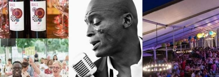 Arts For All Gala featuring Seal at HALL St. Helena - Festival Napa Valley