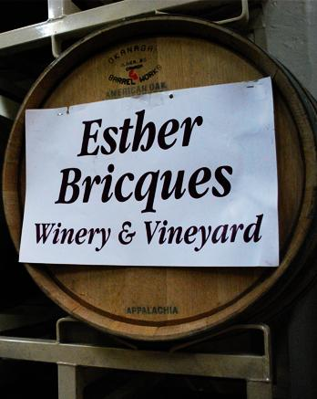 Rockin' Robin performs at Esther Bricques Winery