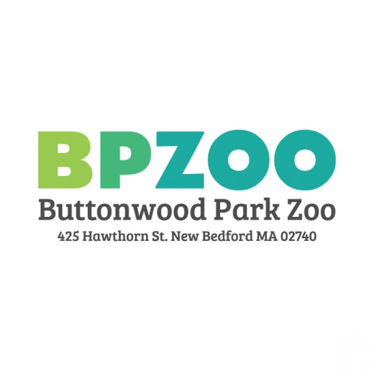 Buttonwood Park Zoo's World Oceans Day
