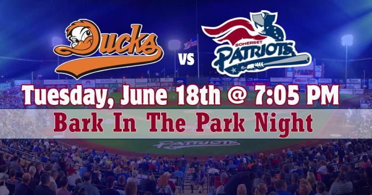 Somerset Patriots vs. Long Island Ducks