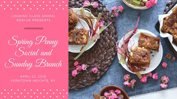 Spring Penny Social and Sunday Brunch
