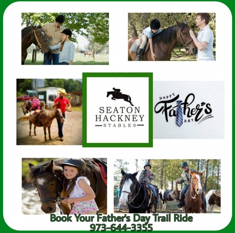 Seaton Hackney Stables - Special Father's Day Trail Rides