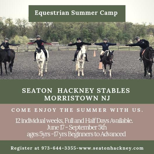Seaton Hackney Stables Equestrian Summer Camp