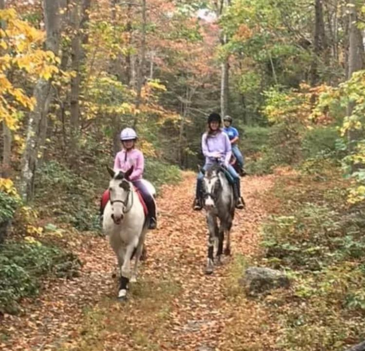 FALL TRAIL RIDES AT SEATON HACKNEY STABLES