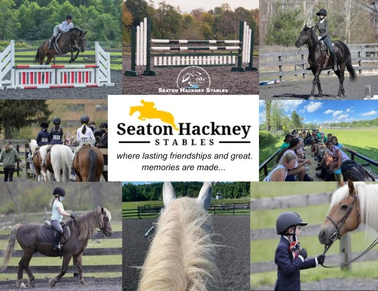 Seaton Hackney Stables- Experience The Love of Horses