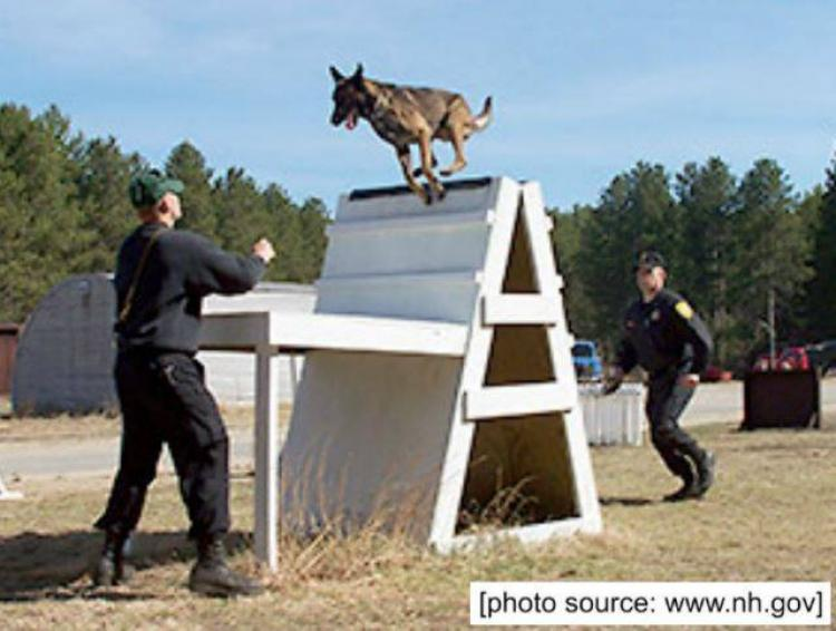 NH State Police K-9 Demonstration