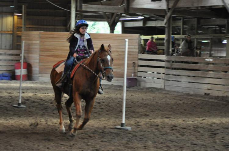 Horseback Riding Lessons (Indoor arena for year round fun)